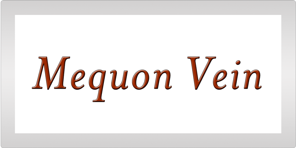 Mequon Vein Testimonial